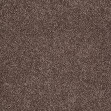 Shaw Floors Value Collections Remember Me (s) Net Boysenberry 00940_E0892