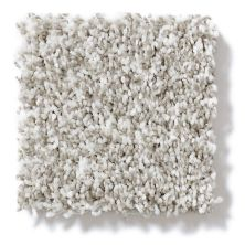 Shaw Floors Value Collections Remember Me (t) Net Goose Down 00100_E0893
