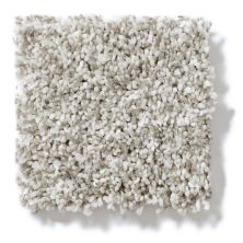 Shaw Floors Value Collections Remember Me (t) Net Geyser 00101_E0893