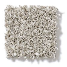 Shaw Floors Value Collections Remember Me (t) Net Clam Shell 00102_E0893
