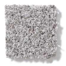 Shaw Floors Value Collections Remember Me (t) Net Serenity 00300_E0893