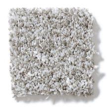 Shaw Floors Value Collections Remember Me (t) Net Dew Mist 00500_E0893