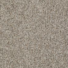 Shaw Floors Value Collections Belong With Me Net Travertine 00103_E0899