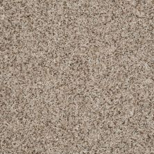 Shaw Floors Value Collections Belong With Me Net Camelback 00200_E0899