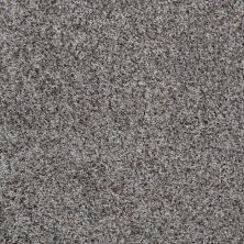 Shaw Floors Value Collections Belong With Me Net Cape Cod Grey 00502_E0899