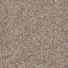 Shaw Floors Value Collections Belong With Me Net Pebble Dust 00700_E0899