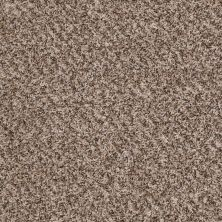 Shaw Floors Value Collections Decorate With Me I Net Stepping Stone 00113_E0900