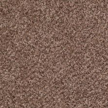 Shaw Floors Value Collections Decorate With Me I Net Wicker 00211_E0900