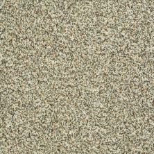 Shaw Floors Value Collections Travel With Me (b) Net Sunlit Granite 00130_E0902