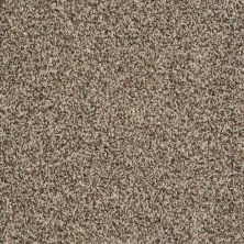 Shaw Floors Value Collections Travel With Me (b) Net Acorn 00730_E0902