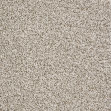 Shaw Floors Value Collections Travel With Me (t) Net Creamed Wheat 00110_E0903