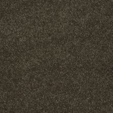 Shaw Floors Value Collections Sing With Me I Net Walnut 00705_E0905