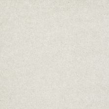 Shaw Floors Value Collections Sing With Me II Net Cotton 00100_E0906