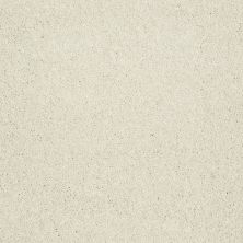 Shaw Floors Value Collections Sing With Me II Net Pearl 00102_E0906