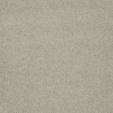 Shaw Floors Value Collections Sing With Me II Net Oatmeal 00104_E0906