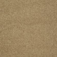 Shaw Floors Value Collections Sing With Me II Net Camel 00201_E0906