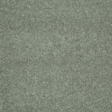 Shaw Floors Value Collections Sing With Me II Net Organic Leaf 00301_E0906
