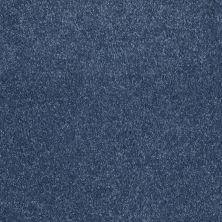 Shaw Floors Value Collections Sing With Me II Net Indigo 00402_E0906