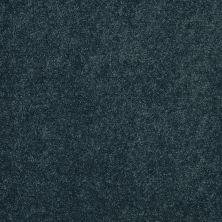 Shaw Floors Value Collections Sing With Me II Net New Navy 00403_E0906