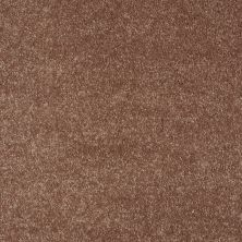 Shaw Floors Value Collections Sing With Me II Net Autumn 00600_E0906
