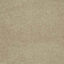 Shaw Floors Value Collections Sing With Me II Net Rattan 00701_E0906