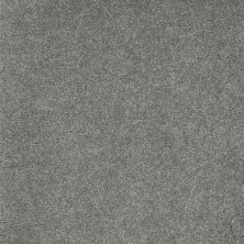 Shaw Floors Value Collections Sing With Me II Net Stone 00703_E0906