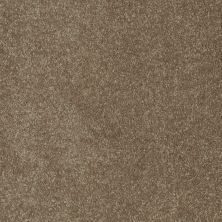 Shaw Floors Value Collections Sing With Me II Net Buck Skin 00706_E0906