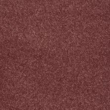 Shaw Floors Value Collections Sing With Me II Net Cherry Pie 00800_E0906