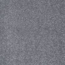 Shaw Floors Value Collections Something Sweet Net Mindful Gray 00501_E0924