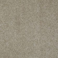 Shaw Floors Value Collections Something Sweet Net Khaki Tan 00700_E0924