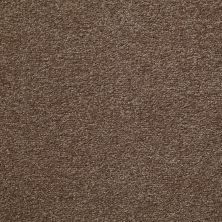 Shaw Floors Value Collections Something Sweet Net Brushed Suede 00702_E0924