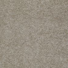 Shaw Floors Value Collections Something Sweet Net Hickory 00711_E0924