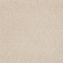Shaw Floors Value Collections That's Right Net Sandy Shore 00101_E0925