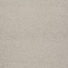 Shaw Floors Value Collections That's Right Net Soft Chamois 00103_E0925