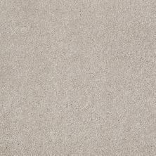 Shaw Floors Value Collections That's Right Net Greige 00106_E0925