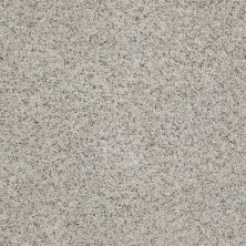 Shaw Floors Value Collections That's Right Net Apple Blossom 00150_E0925