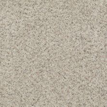 Shaw Floors Value Collections That's Right Net Bliss 00151_E0925