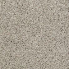 Shaw Floors Value Collections That's Right Net Leisurely 00152_E0925