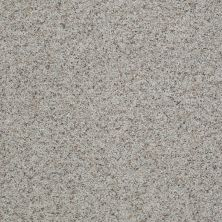 Shaw Floors Value Collections That's Right Net Sandstone 00153_E0925