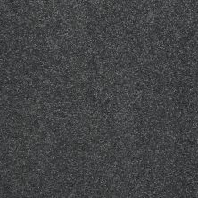 Shaw Floors Value Collections That's Right Net Seacliff Heights 00300_E0925