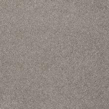 Shaw Floors Value Collections That's Right Net Radiance 00500_E0925
