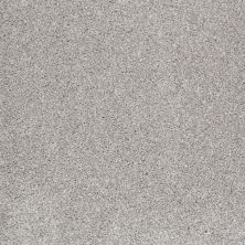 Shaw Floors Value Collections That's Right Net Frosted Ice 00510_E0925