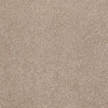 Shaw Floors Value Collections That's Right Net Havana 00701_E0925
