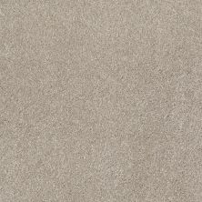 Shaw Floors Value Collections That's Right Net Coastal Fog 00702_E0925