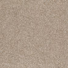Shaw Floors Value Collections That's Right Net Mole Hill 00719_E0925