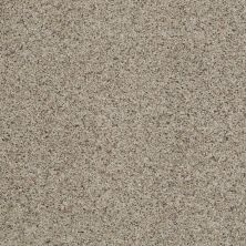 Shaw Floors Value Collections That's Right Net Classic 00750_E0925