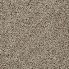 Shaw Floors Value Collections That's Right Net Stunning 00751_E0925