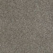 Shaw Floors Value Collections That's Right Net Vintage 00752_E0925