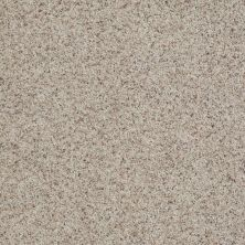 Shaw Floors Value Collections What's Up Net Leisurely 00152_E0926