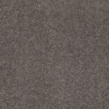 Shaw Floors Value Collections What's Up Net Stone Hearth 00703_E0926